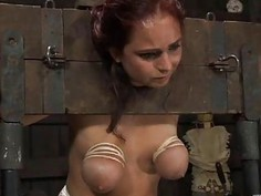 Geeky honey is bounded for violent torment